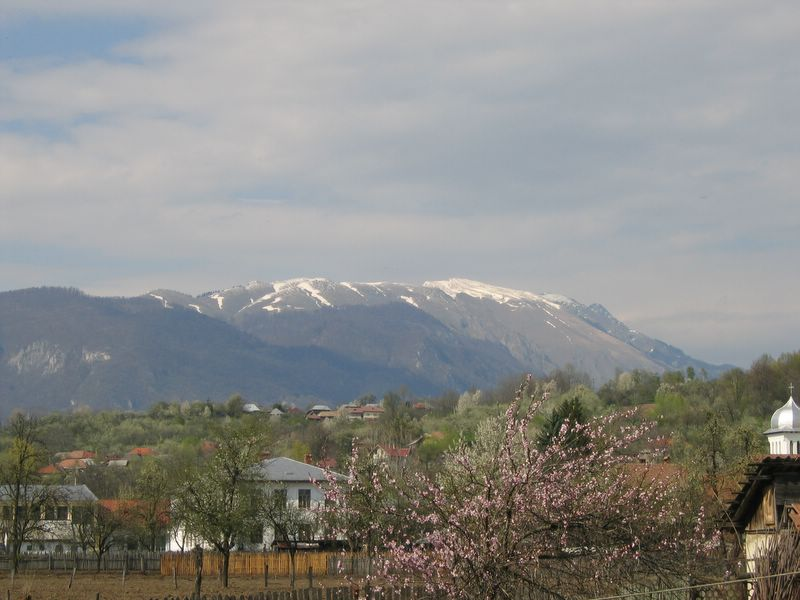 Mountains in the spring